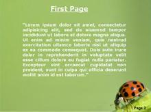 A ladybird on a branch Second PPT Background