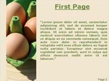 Four eggs pack Second PPT Background