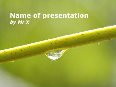 Nature Gift Powerpoint Template image