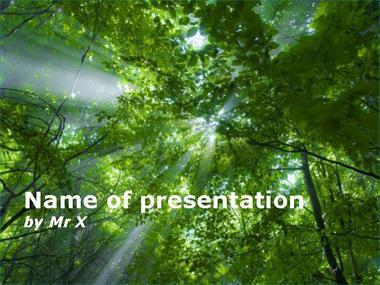 Light in the forest Powerpoint Template image
