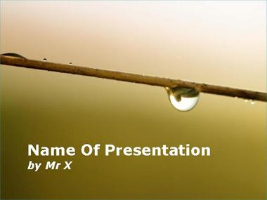 A Raindrop on a Stem Powerpoint Template image