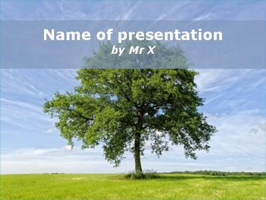 The big tree Powerpoint Template image