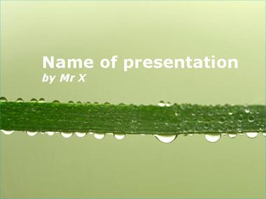 A stem with multiple water drops Powerpoint Template image