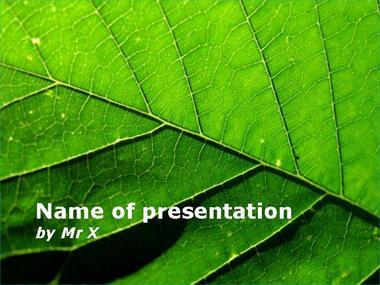 The Green Leaf Powerpoint Template image