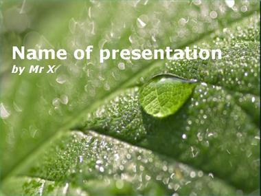 Water Drops on a green leaf Powerpoint Template