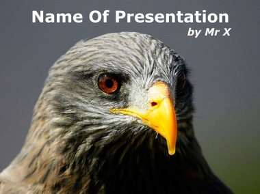 Falcon head Powerpoint Template image