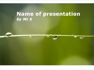Rain and Nature Powerpoint Presentation Template